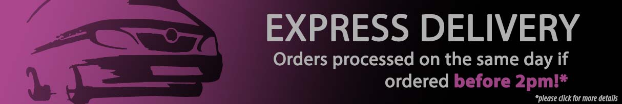 Hair Extensions | Next Day Delivery as Standard!*